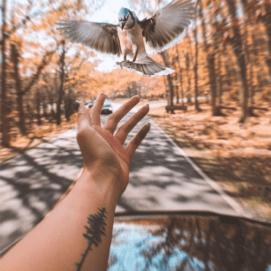 Заветы природы